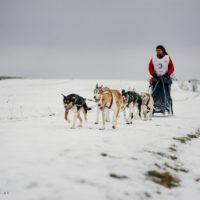 Alaska daleko… Podkarpackie tuż, tuż…