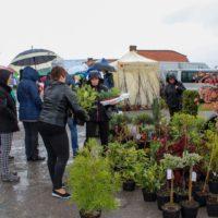 Spore zainteresowanie Wiosenną Giełdą Ogrodniczo-Zielarską